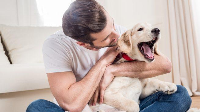La estimulación temprana en perros