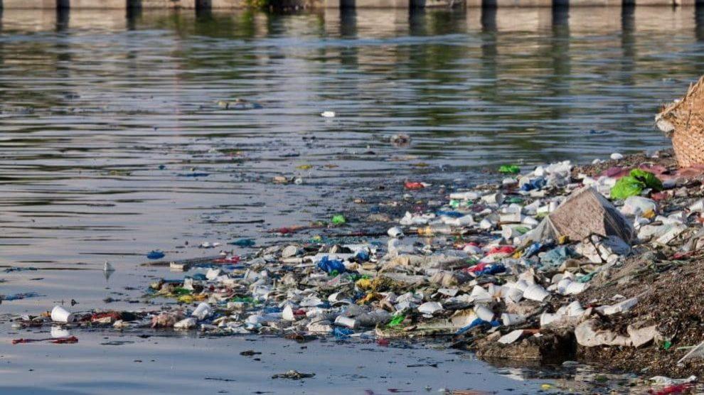 Degradación ambiental: en qué consiste