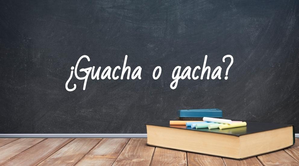 Se escribe guacha o gacha