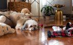 Juguetes para perros hechos