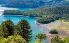 bosques más bonitos del mundo