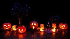 Halloween se está estableciendo como una de las fiestas más importantes el año