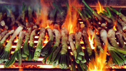 Los calçots son una de las delicias culinarias españolas