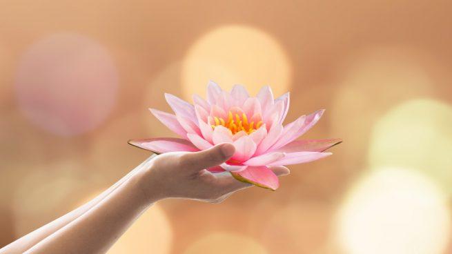 Beneficios de las flores