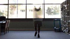 Crean la primera capa de invisibilidad