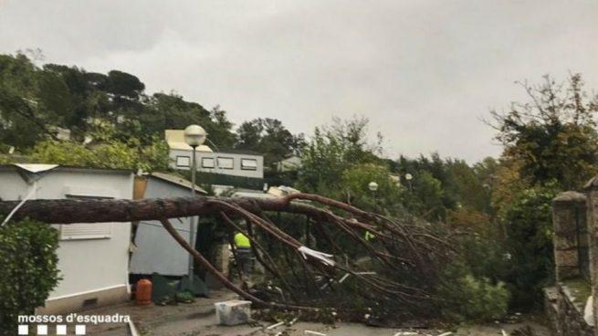 Tres heridos por el temporal, entre ellos una niña, en un camping de Barcelona