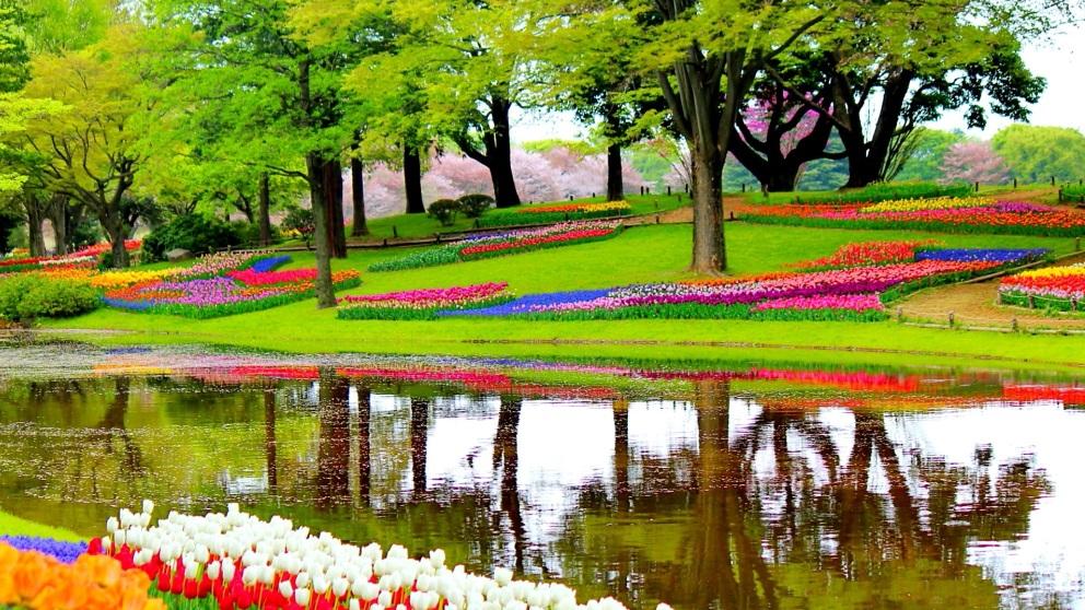 En Holanda puedes encontrar un parque que parece dibujado a la perfección