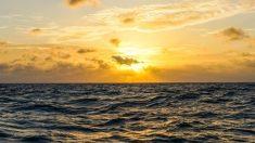 Curiosidades del mar que te sorprenderán