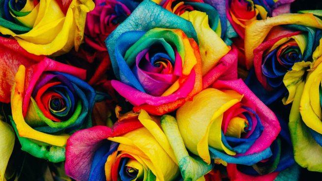 Cómo hacer rosas arcoíris