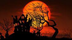 fiestas temáticas para halloween en madrid