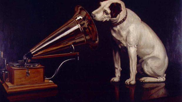 La música en tu mascota