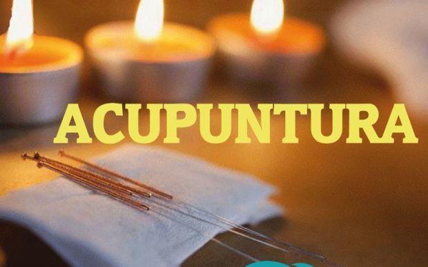 La acupuntura veterinaria