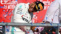 Hamilton vuelve a ser campeón del mundo. (AFP)