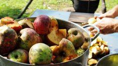El proceso de una fruta oxidada