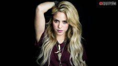 Shakira confirmó su crisis con Gerard Piqué
