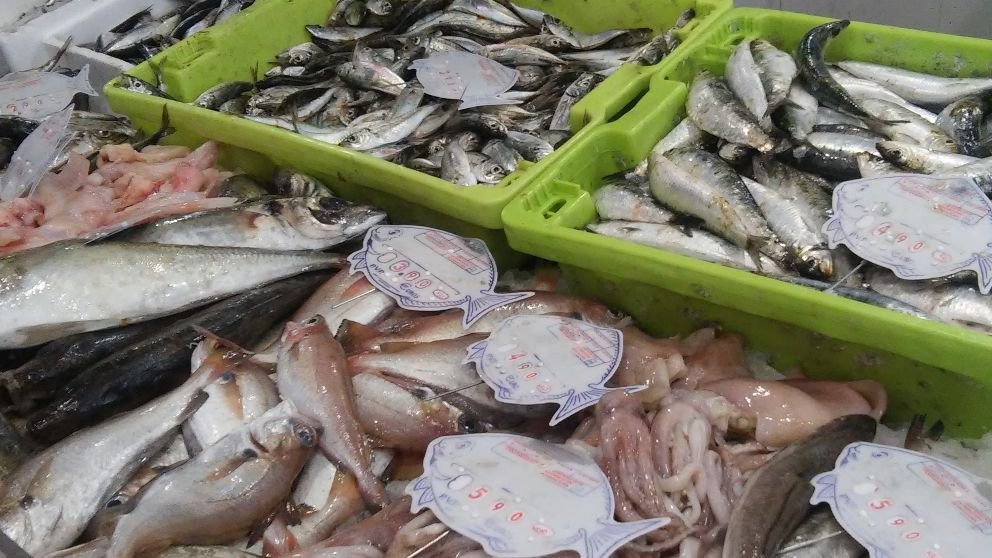 Cuáles son los pescados con más mercurio