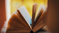 8 de noviembre: Día de las Librerías
