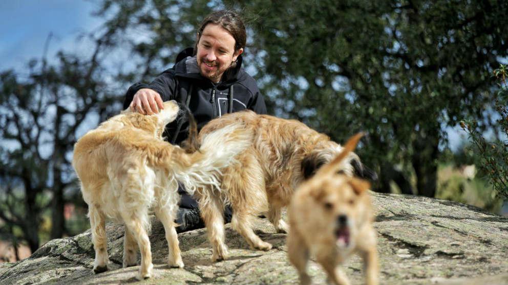 Pablo Iglesias junto a sus perros Leona, Rumba y Tirso, en la jornada de reflexión.