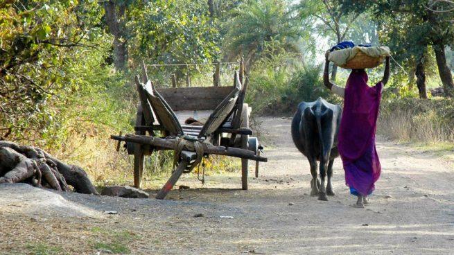 intocables en la India