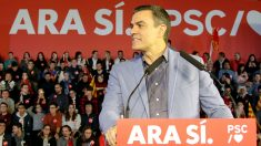 Pedro Sánchez. (Foto: Enrique Falcón)