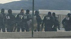 Antidisturbios franceses movilizados contra los CDR en La Junquera.