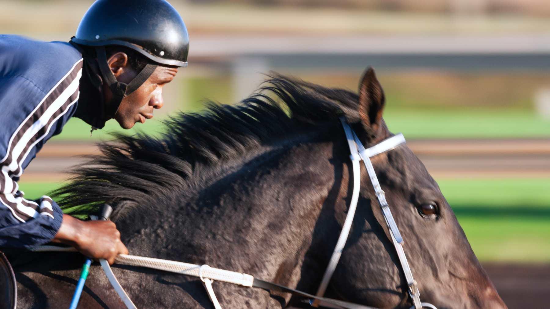 Mejores razas de caballos de carreras