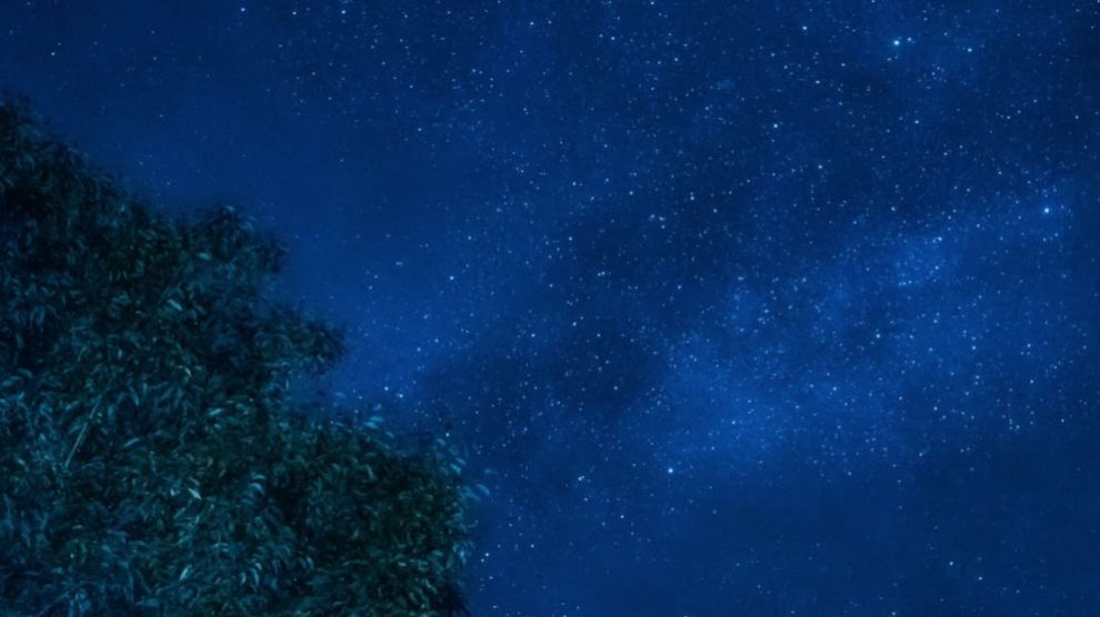 Leónidas 2019: cómo y dónde ver la lluvia de estrellas