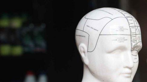 Usos y funciones de los lóbulos cerebrales