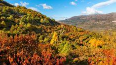 El Valle del Jerte es una de las zonas más bonitas del país