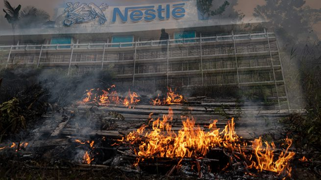 Nestlé acusada de comprar aceite de palma a productores investigados por causar incendios en Indonesia