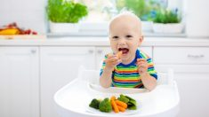 Nuevos alimentos bebés