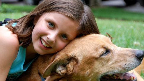 Juegos para que tu hijo cuide su mascota
