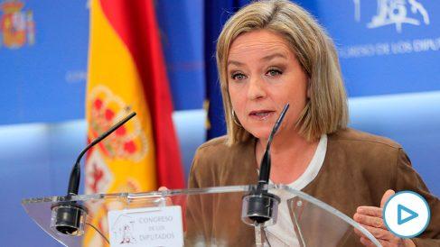 La diputada de Coalición Canaria Ana Oramas, durante la rueda de prensa celebrada hoy viernes en el Congreso de los Diputados. (Foto: EFE).