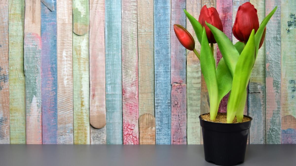 Pasos para endurecer flores artificiales