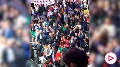 La reacción de Piqué tras el triunfo de España en la Copa Davis.