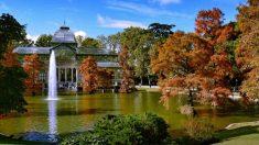 El Parque del Retiro es uno de los rincones madrileños más bonitos