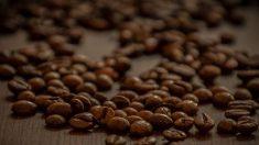 Cómo nos afecta la cafeína a nuestra salud