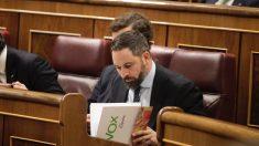 Santiago Abascal durante el arranque de la XIV legislatura. (Foto: Francisco Toledo)