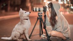 Tips para fotografiar a tu mascota