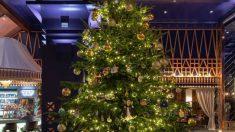 El árbol de Navidad más caro del mundo está en España