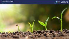 sostenibilidad-entorno-cop25-endesa-azul