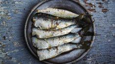 Receta de sardinas en salmuera