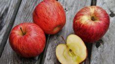 Las manzanas se oxidan rápidamente