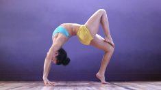 El yoga tiene muchas variantes que merece la pena descubrir