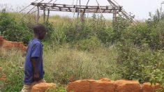 Los 5 países más poblados de África