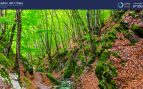 España ratifica la contribución de 150 millones de euros al Fondo Verde para el Clima