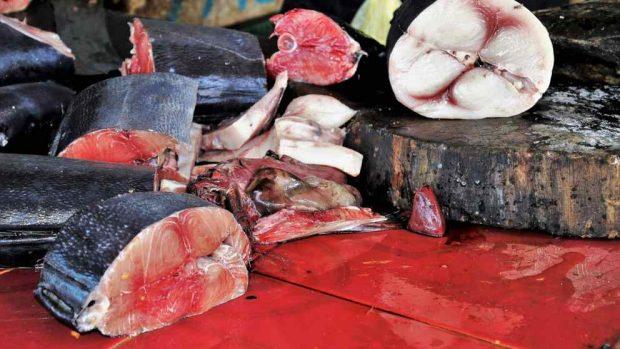 Pros y contras de comer atún crudo
