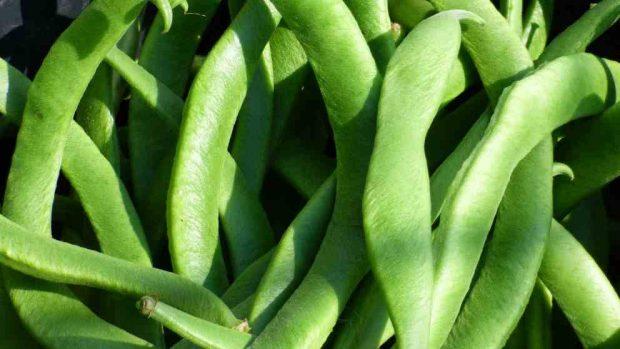 Judías verdes con carne picada a la barbacoa