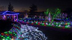 Los japoneses viven la Navidad de una forma muy peculiar