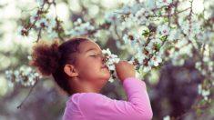 Descubre los mejores nombres para niña inspirados por las flores